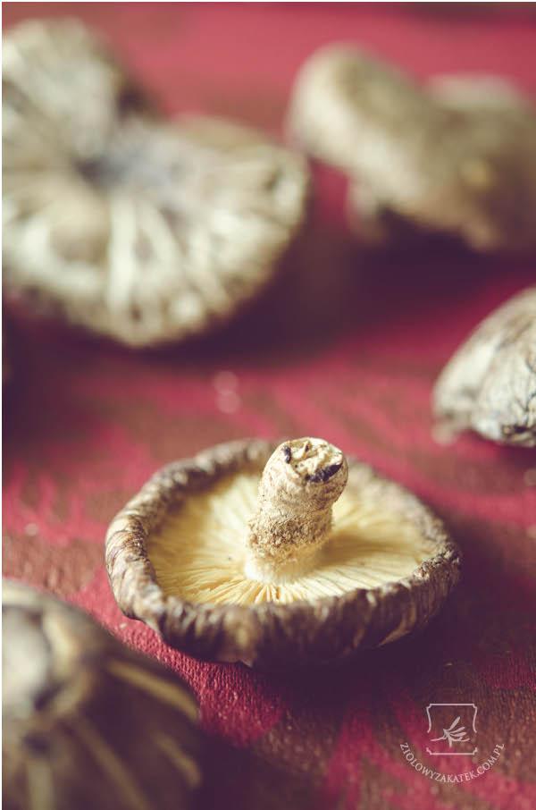 grzyby shiitake suszone