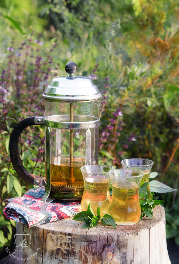 arabska-herbata-mietowa