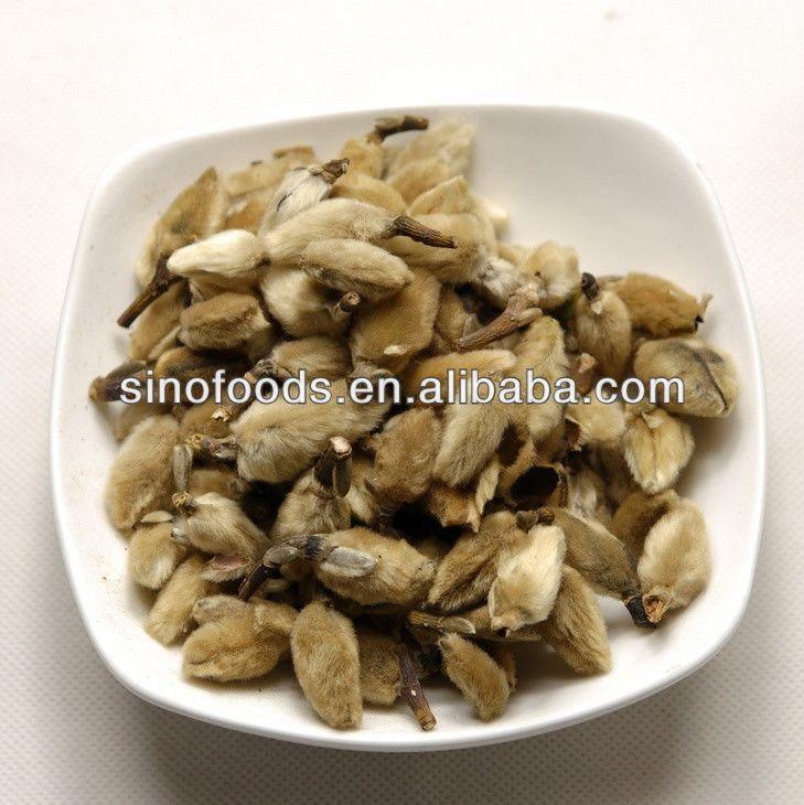Magnolia_flower_FLOS_MAGNOLIAE_dry_flowers_dry