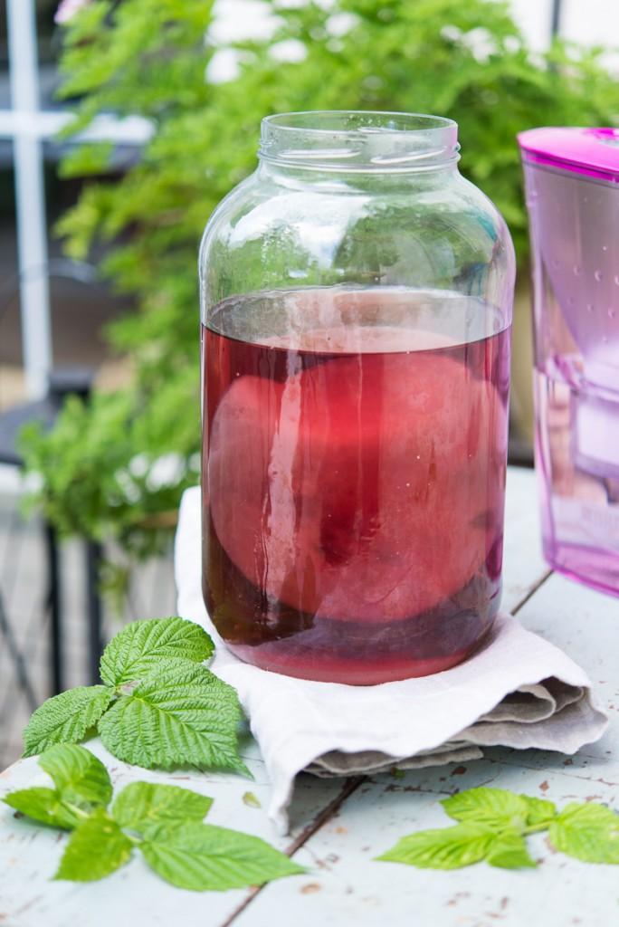 herbata-fermentowana-kombucza (1 of 1)