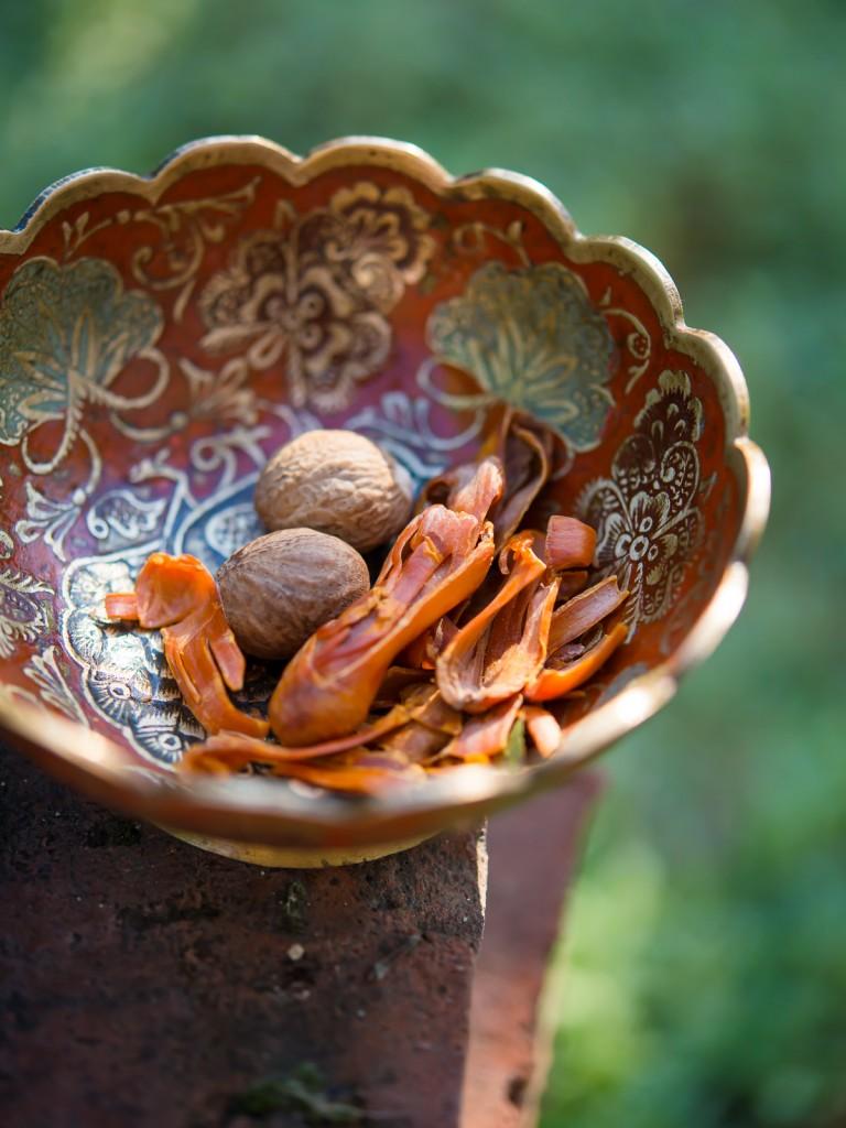 Osnówka gałki muszkatołowej – kulinarne odkrycie jesieni