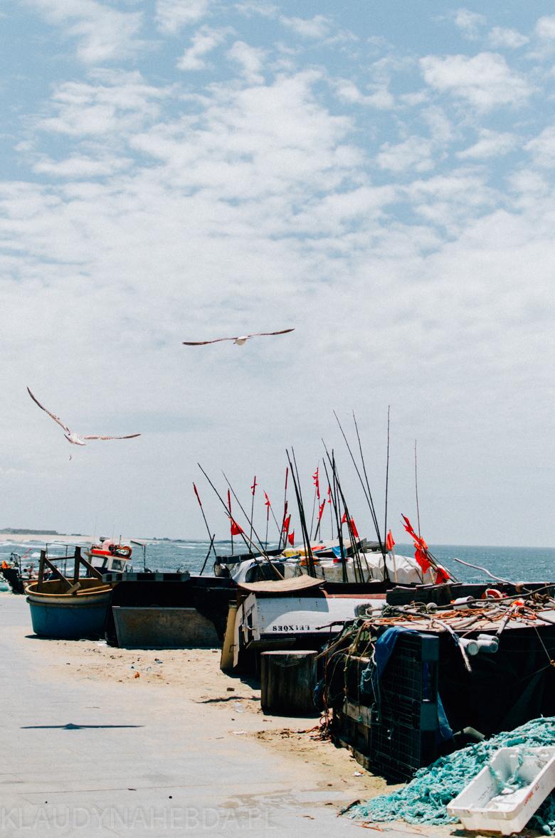 ocean-porto-3995