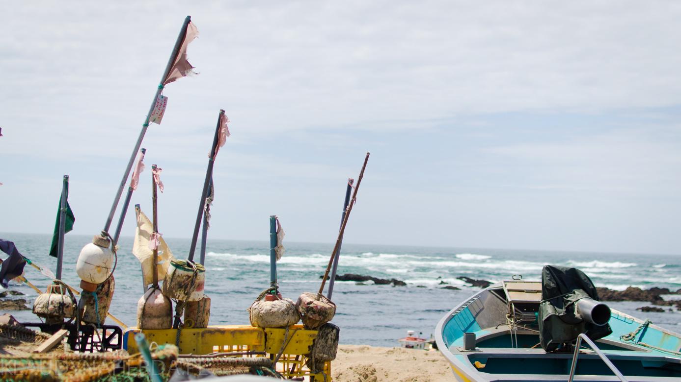 ocean-porto-4016