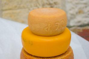 Wybrałam się na kurs robienia serów – relacja specjalnie dla Ciebie!:)
