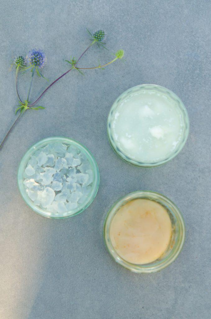 Akcja fermentacja! Poznaj SCOBY. Symbiotyczne kultury drożdży i bakterii – dla zdrowia i dla smaku:)