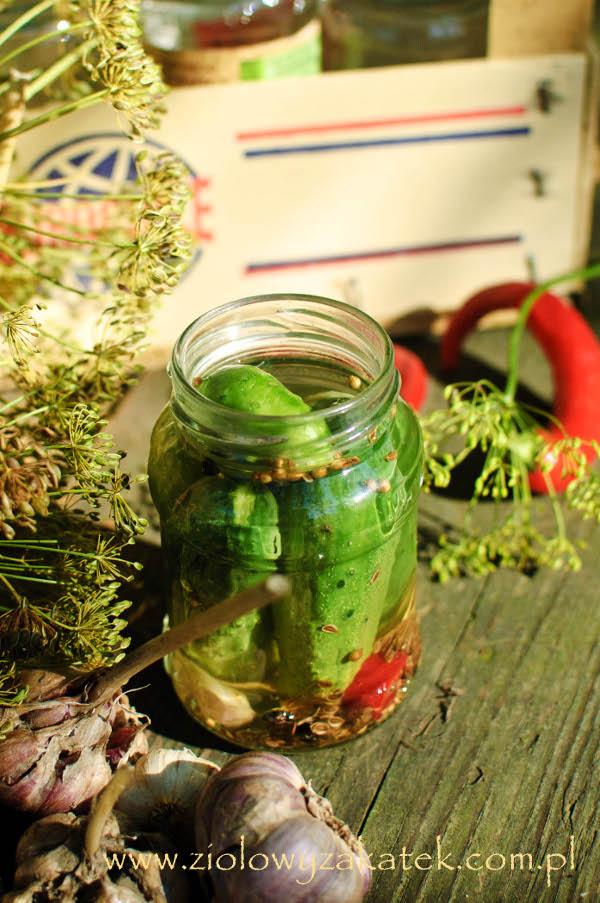 Przetwory z ogórków z sosem sojowym