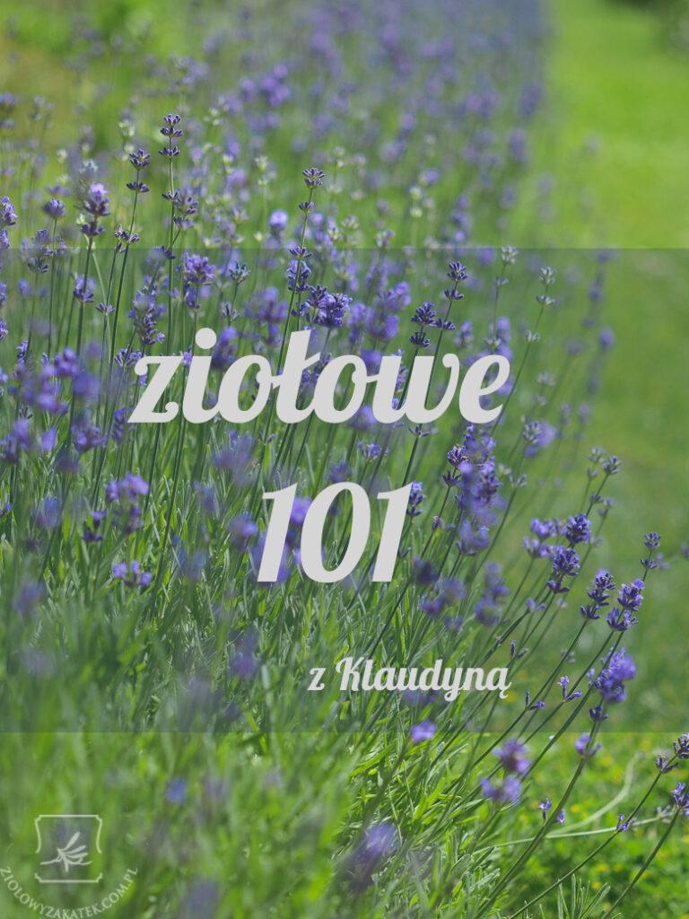ziolowe101