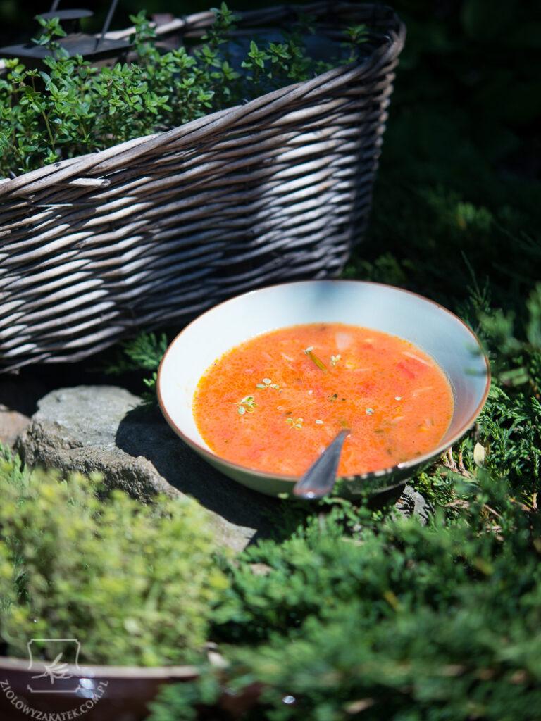 zupa-pomidorowa-prowansalska-1060 - Copy