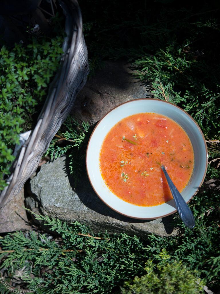 zupa-pomidorowa-prowansalska-1070 - Copy