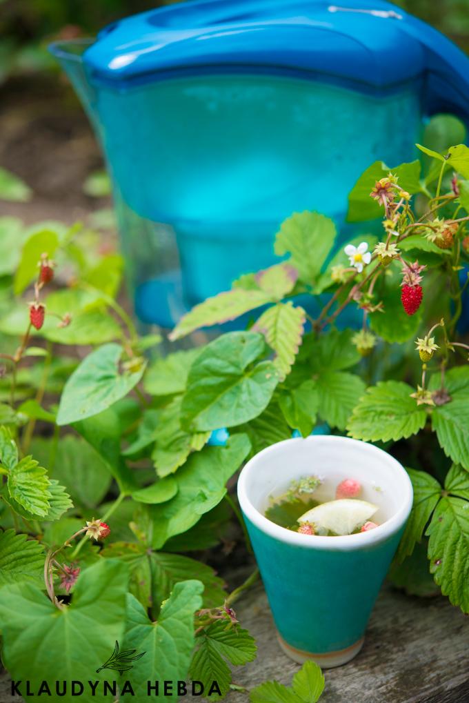 herbatka-poziomkowa (1 of 1)-5