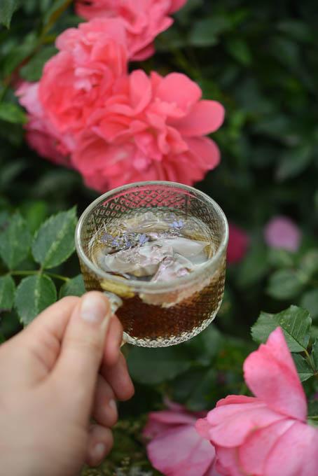 herbata-rozana (1 of 1)-5
