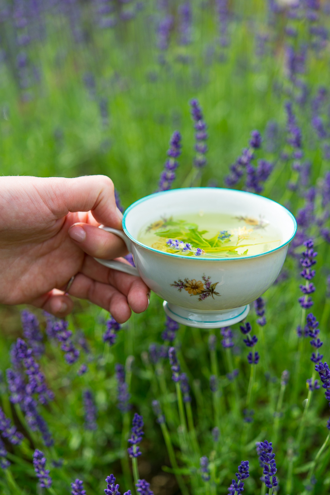 Ziołowe herbatki na lato!