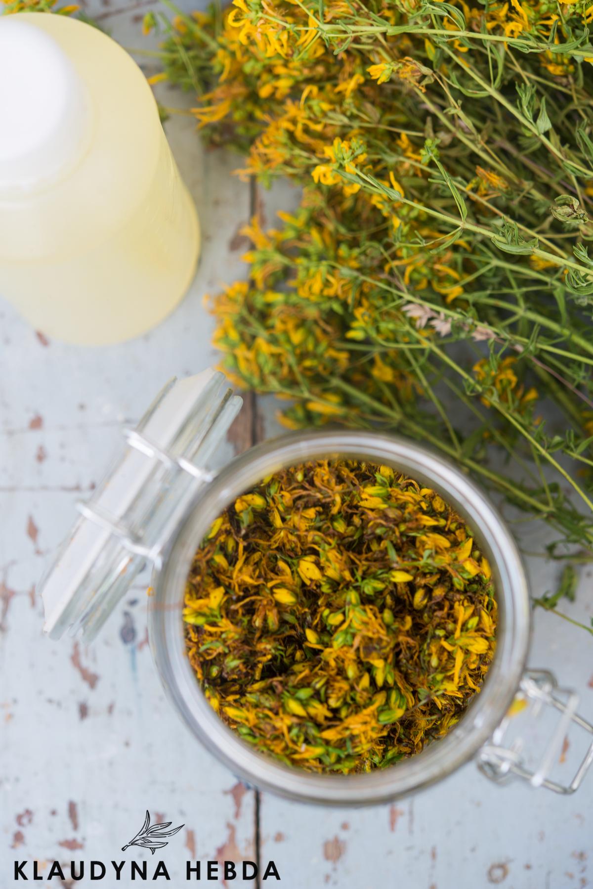 Jak wybrać najlepszy olej do maceracji ziół? Kompletny przewodnik. Cz 1
