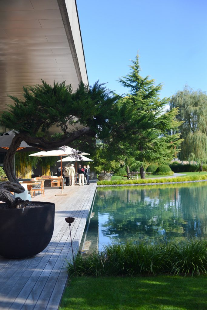 Muzeum Drzew w Szwajcarii: klasyczna elegancja i przedziwne rzeźby.