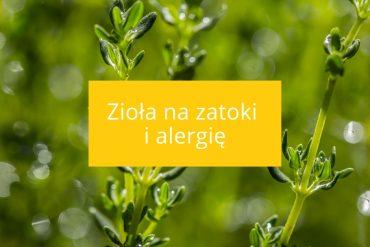 sposoby na zatoki i alergię