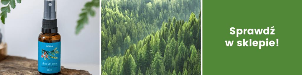 Zrób sobie zapach lasu w domu. Spray Chcę do lasu w sklepie Klaudyna Hebda.